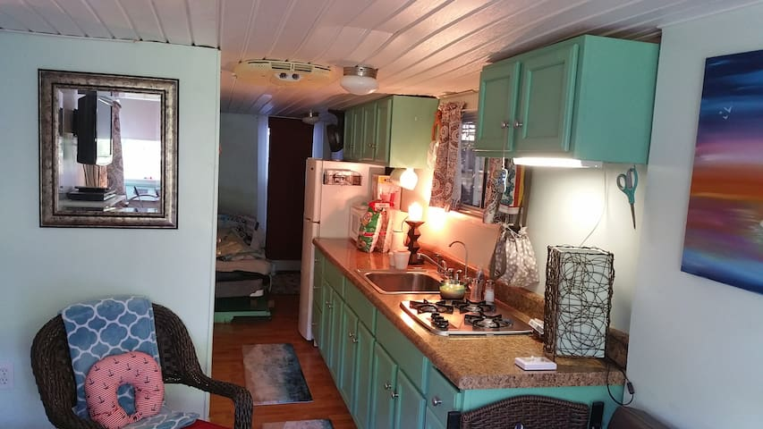 Houseboat near Nashville