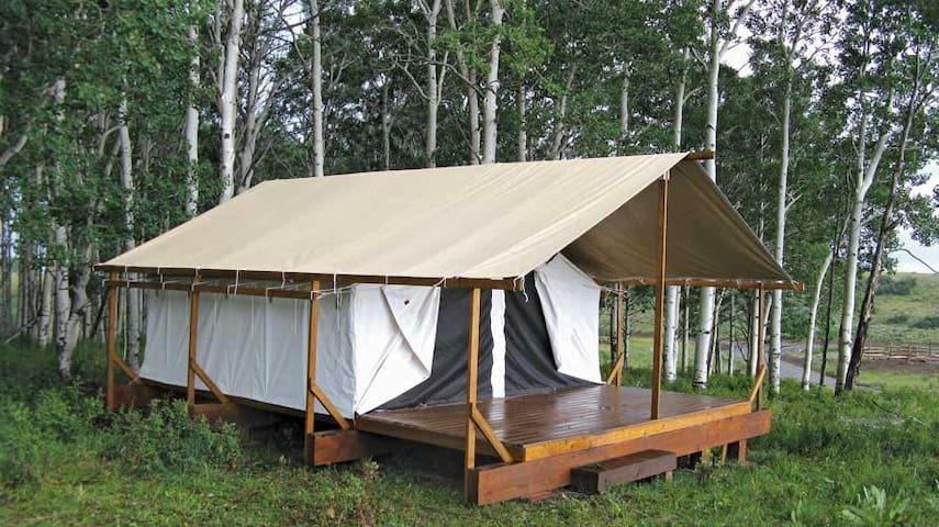T01 Deluxe Tent