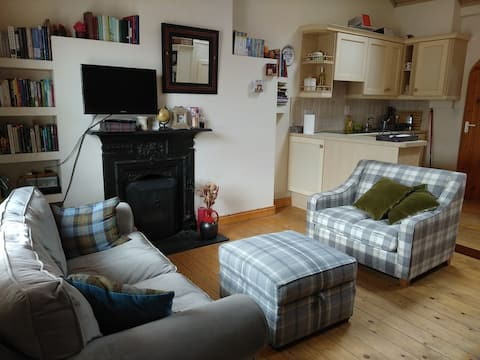 Cosy cottage in the heart of Dublin with Wi-Fi