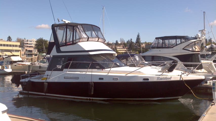 43' Yacht in Kenmore on Lake Washington - Kenmore - เรือ