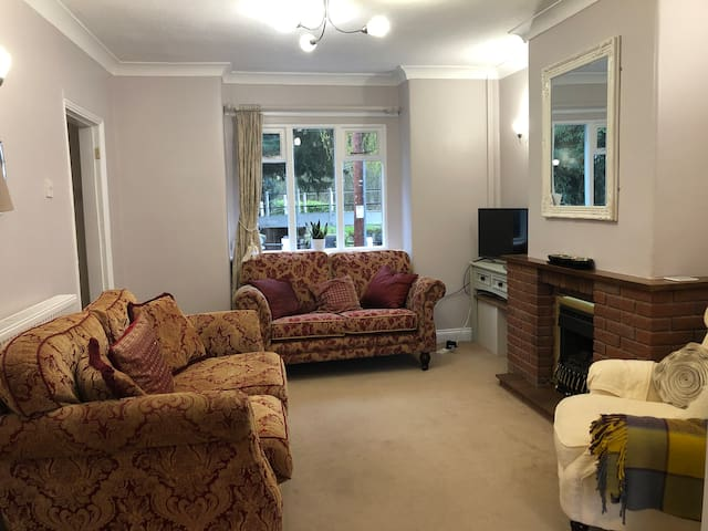 The living room with smart TV and gas fire place