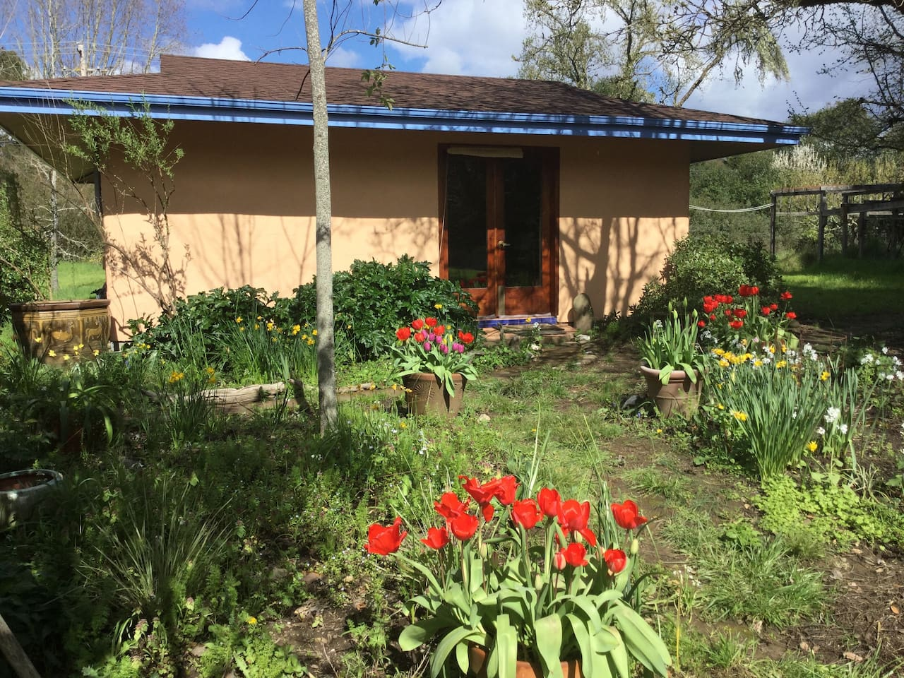 The straw bale guesthouse early April