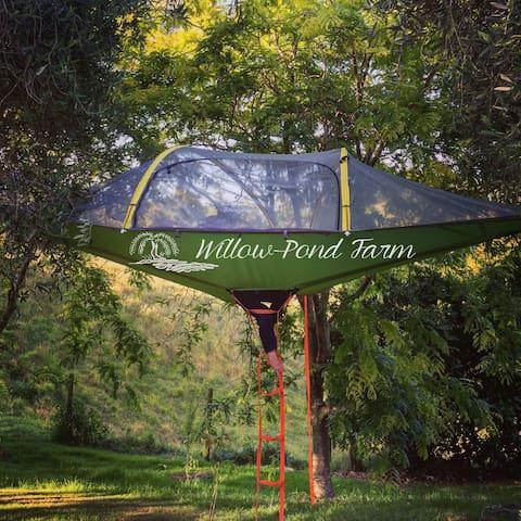 Willow Pond Farm Tree Tents