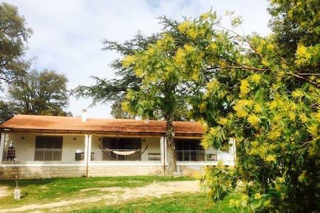 The Cosy Country House - Tempio Pausania - House