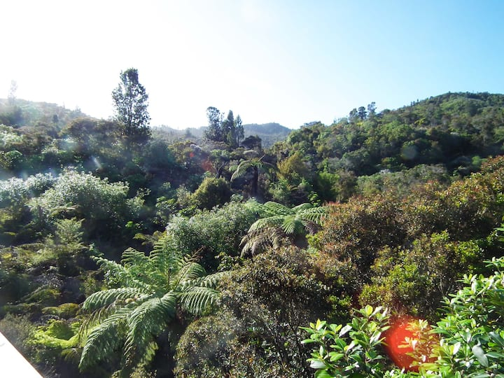 Waiora Healing Waters in the Coromandel