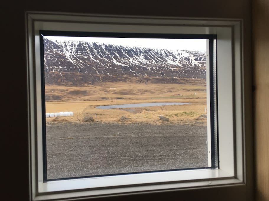 The view from one of many windows