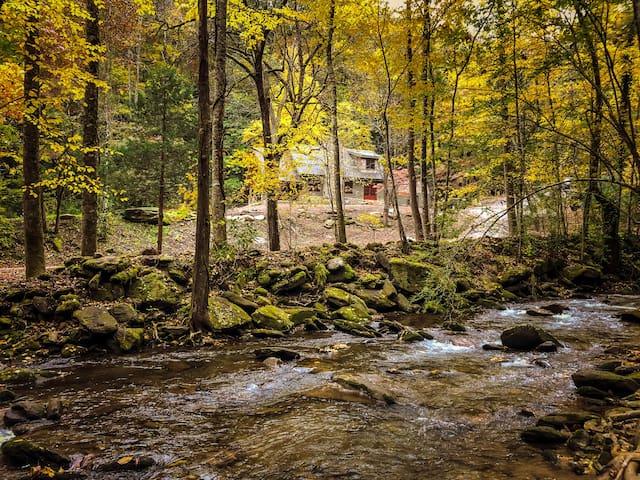 Creekfront, and serene