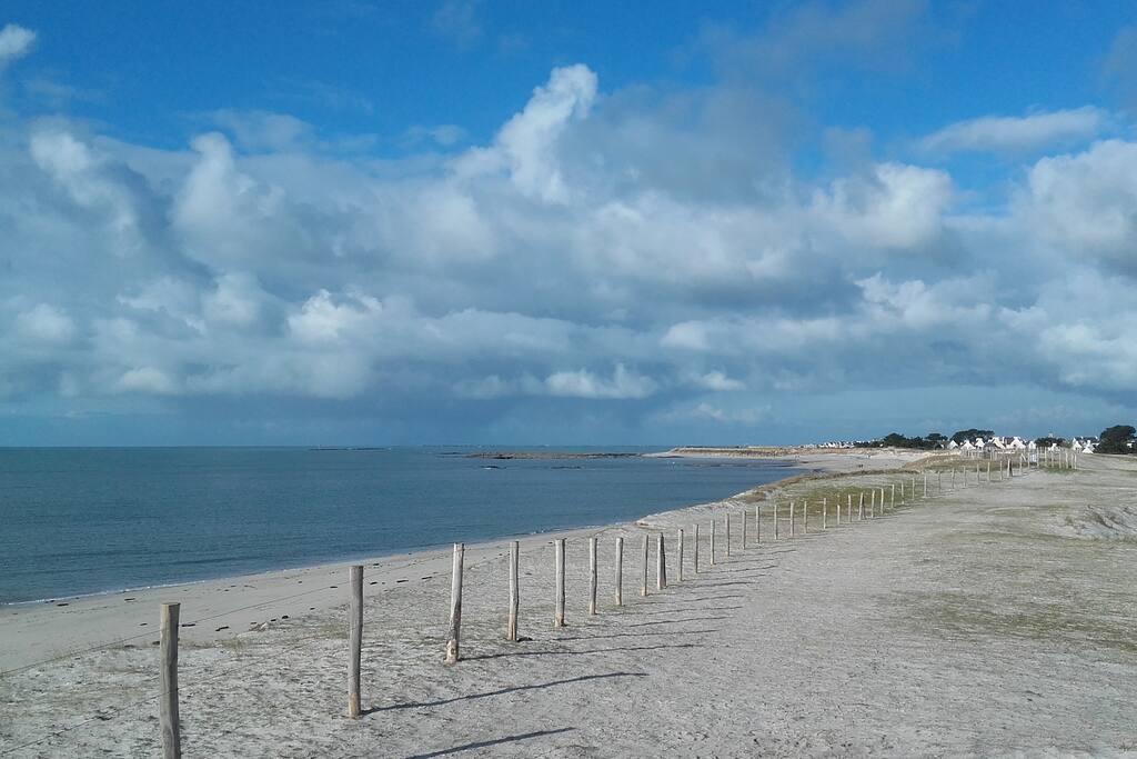 De Lesconil à Tréffiagat, vous pouvez aussi lézarder sur les 4 kms de sable fin des plages de Goudoul, Kersaux, le Reun, Squividan et Léhan.