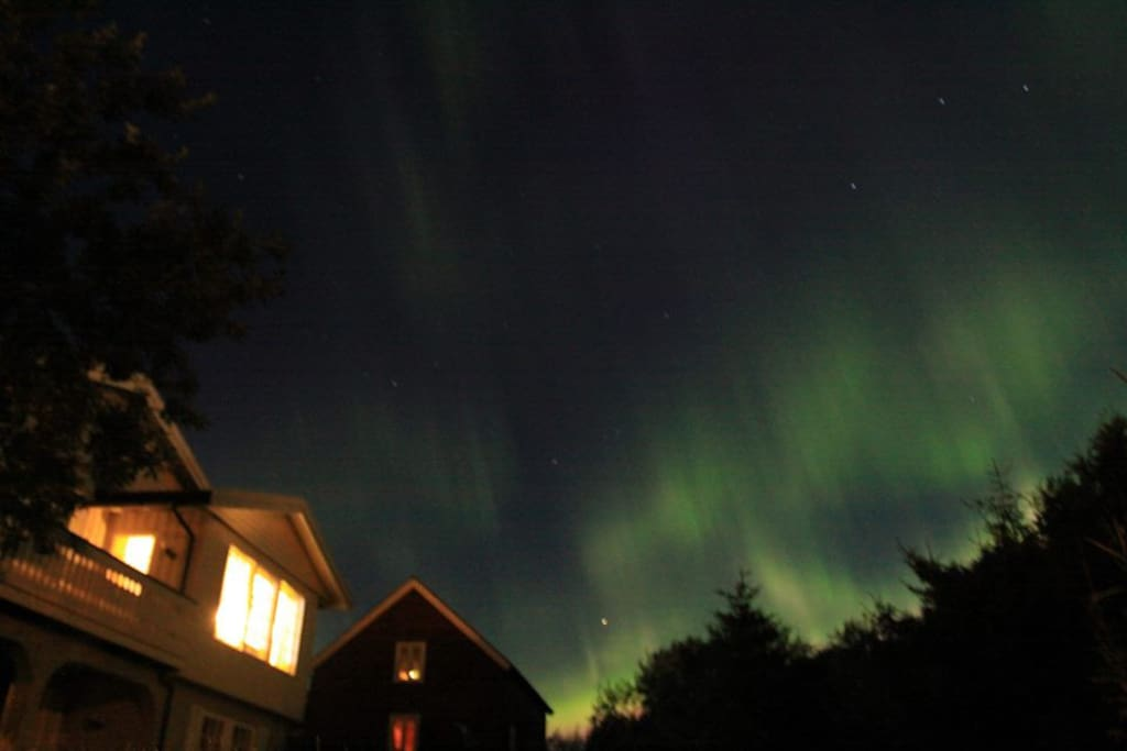 Amazing Northern Lights can be seen over the house, from september-mars. And also only 10 min with car to famous Haukland and Uttakleiv beach.
