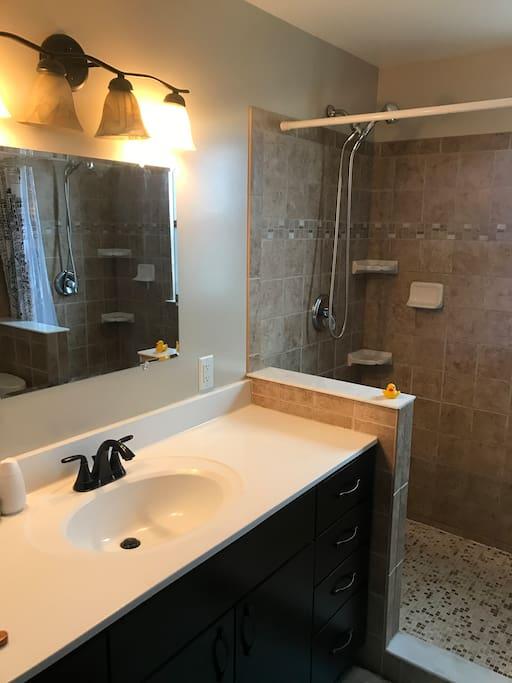 Bathroom vanity and left side shower head