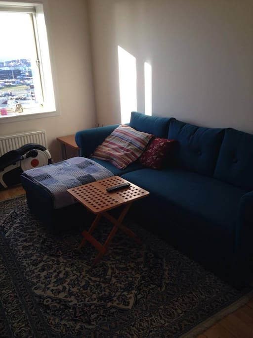 Your room with a very good double sofabed, tv, cabinet and a crosstrainer