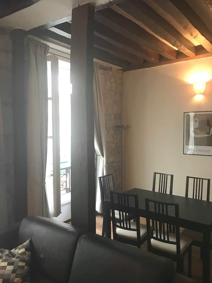 Apartment next Notre dame de Paris 45m2