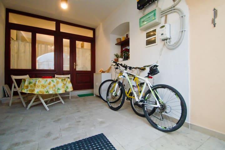 Noleggio bici GRATIS !!!