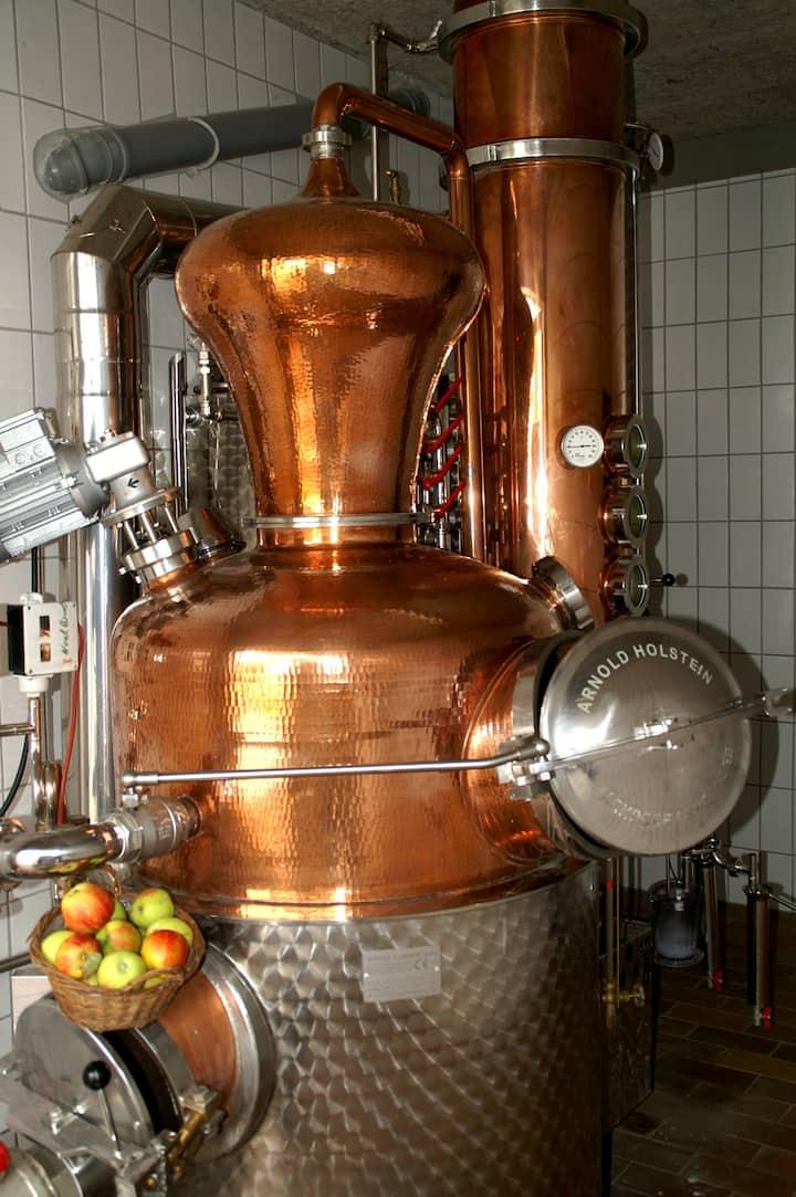 Besondere Entdeckung: Destille