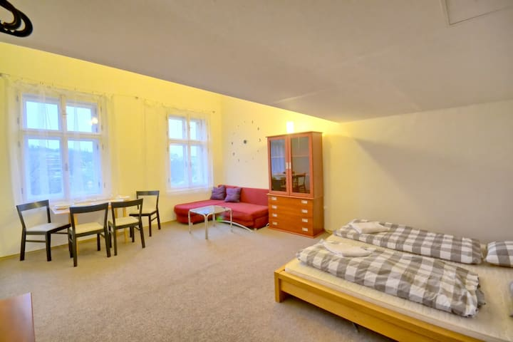 Central & spacious with nice view - Praha - อพาร์ทเมนท์