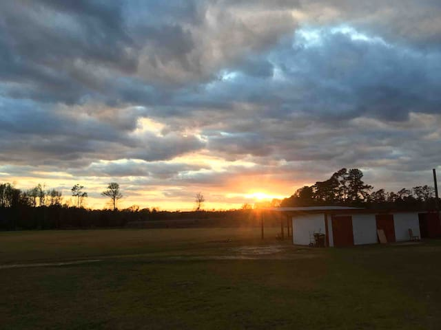 20 Acres/W hunting and Beautiful Country living