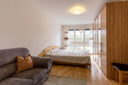 Quality  apartment close to the Rheinfall - Schaffhausen - Apartament