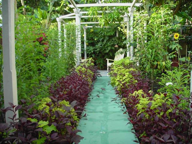 ★Exotic nature views★Divine food★Perfect location★ - Baracoa - Hus