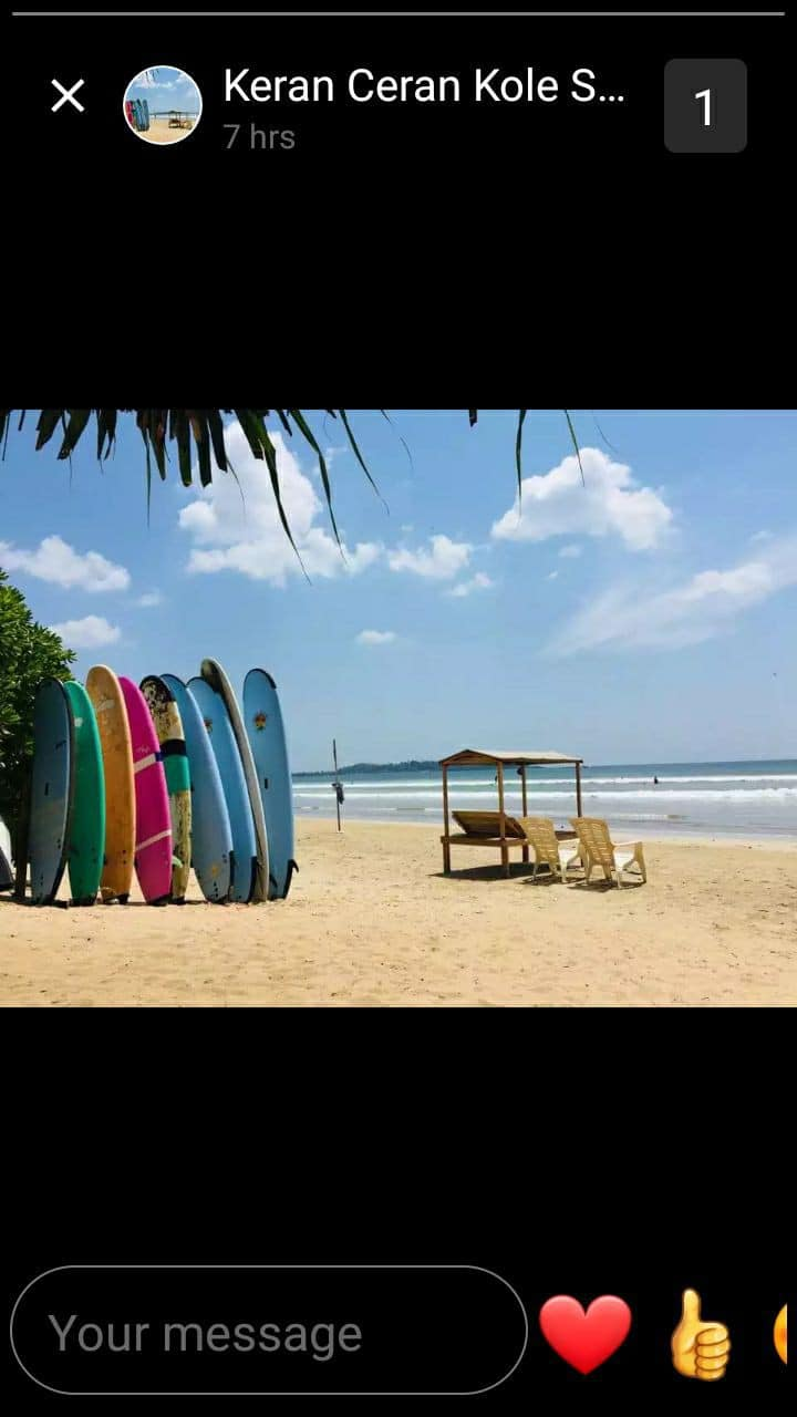foods,surfing,safaris,tours, whale watching etc