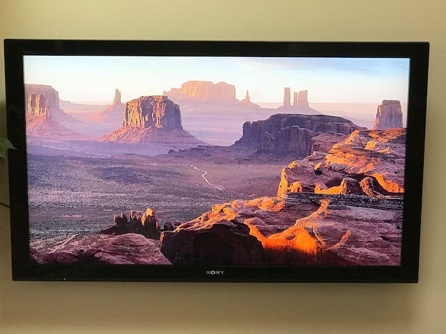 "60"" wide-screen television with Roku. Wi-Fi with fast speed internet and live streaming."