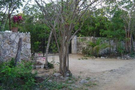 Villa en Riviera Maya, amantes de la naturaleza - Playa del Carmen - Apartemen