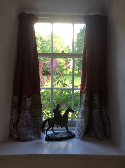 A window of the living room with wild valerian growing outside.