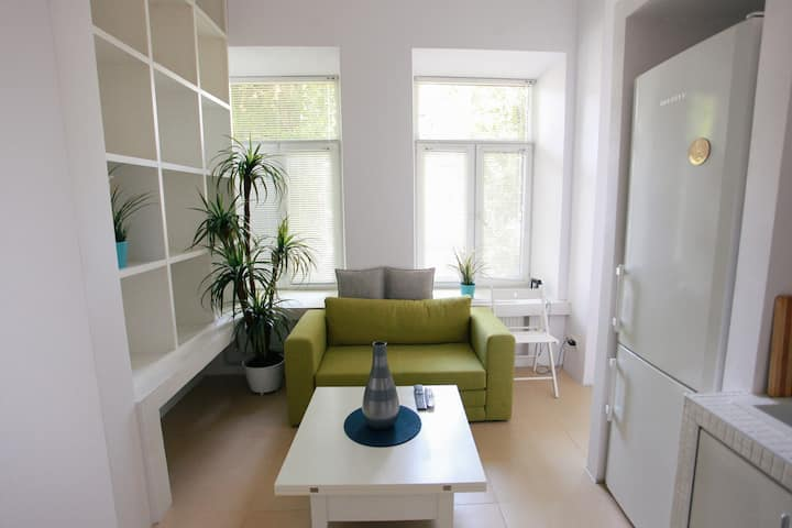Clean & fully renovated apartment in the center