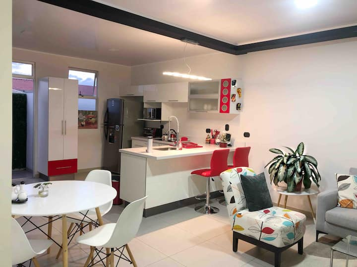 Modern Apartment in San José down town