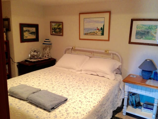 """Guest bedroom #2 """"The Blue Room"""" has one queen sized bed, a twin bed and a closet full of toys."""