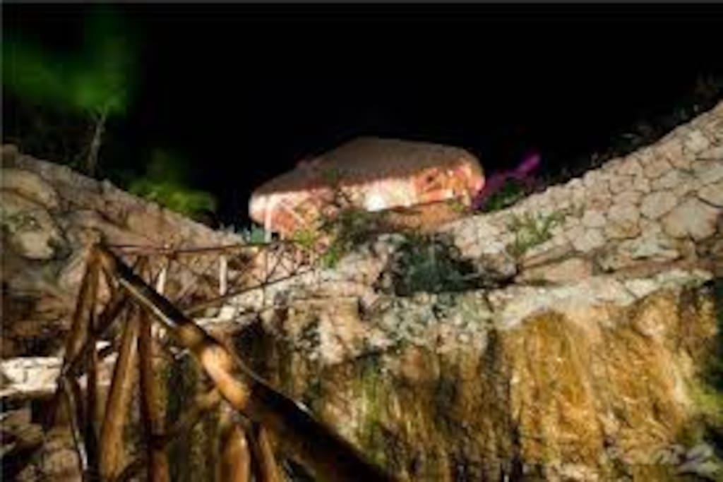 Acceso al cenote privado