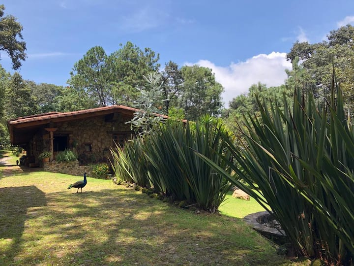 La Finca de Piedra, Valle de Bravo, EdoMex.