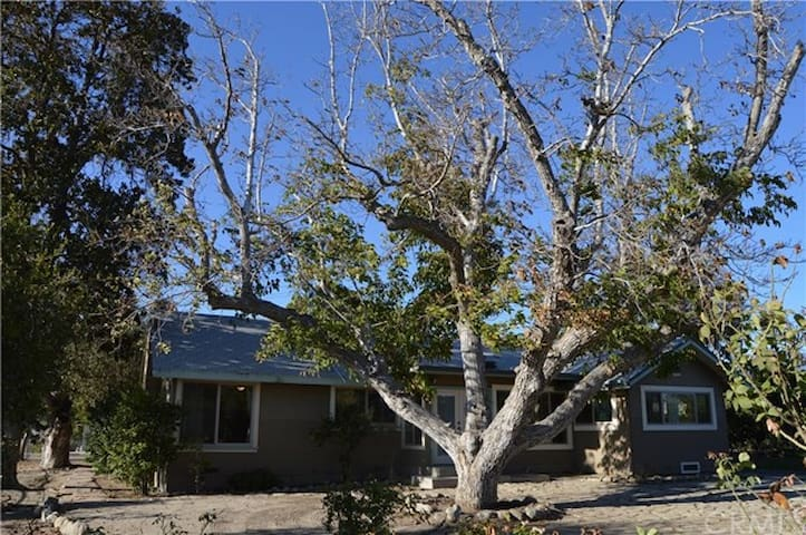 Cottage in the Orange Groves - Hemet - Ev