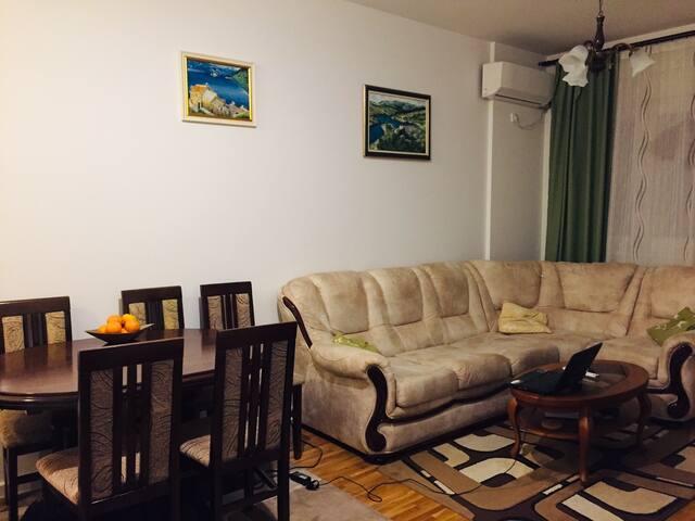 舒适迷人的公寓
