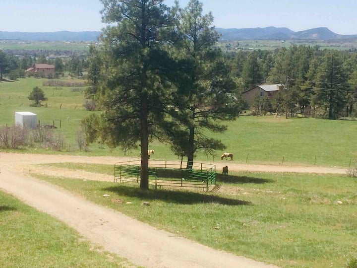 Horse Haven-family & horse friendly country home