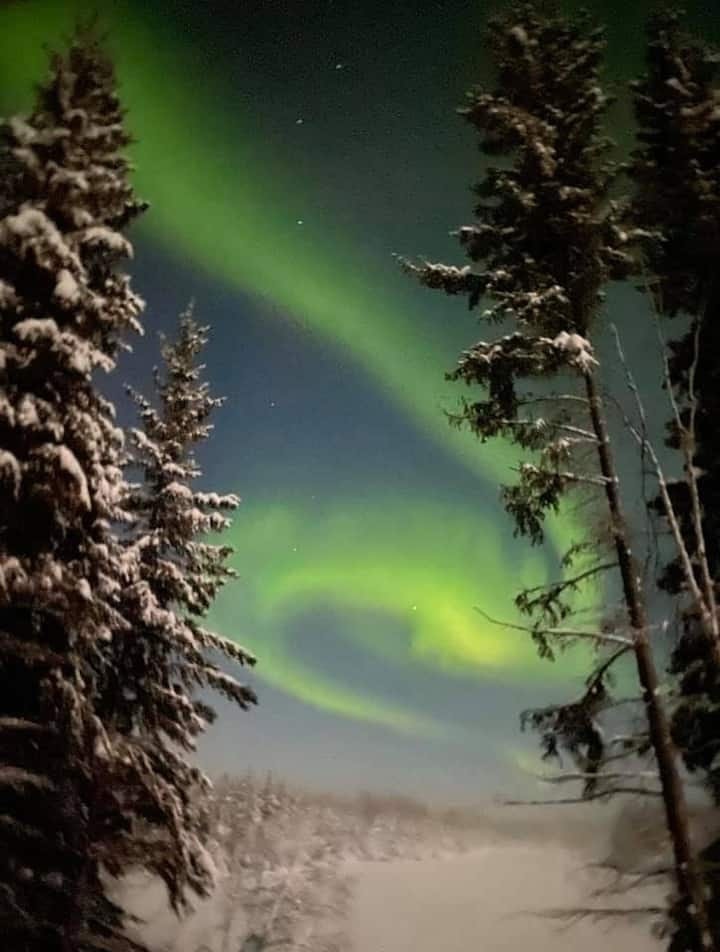Experience Lakeside Cabin Living in North Pole, AK