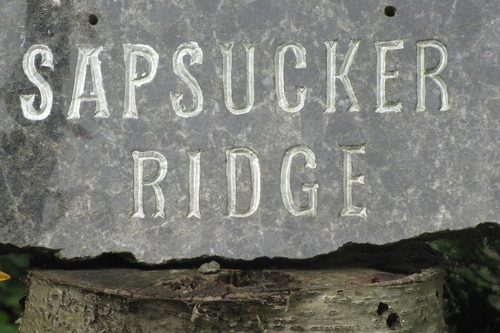 Sapsucker Ridge, a home in Nature.