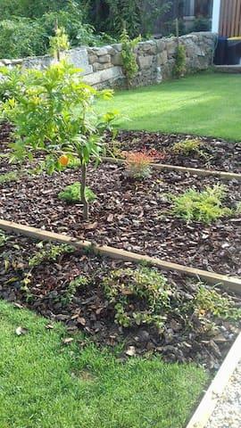 Jardim e Horta Biológica