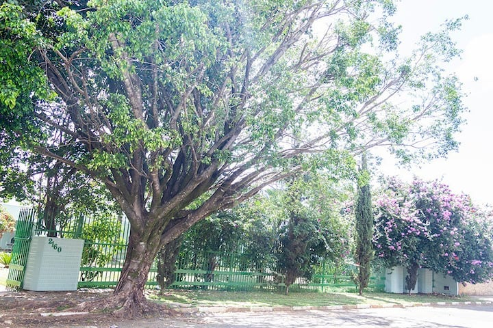 Mansão arborizada pertinho da Serra da Canastra !!