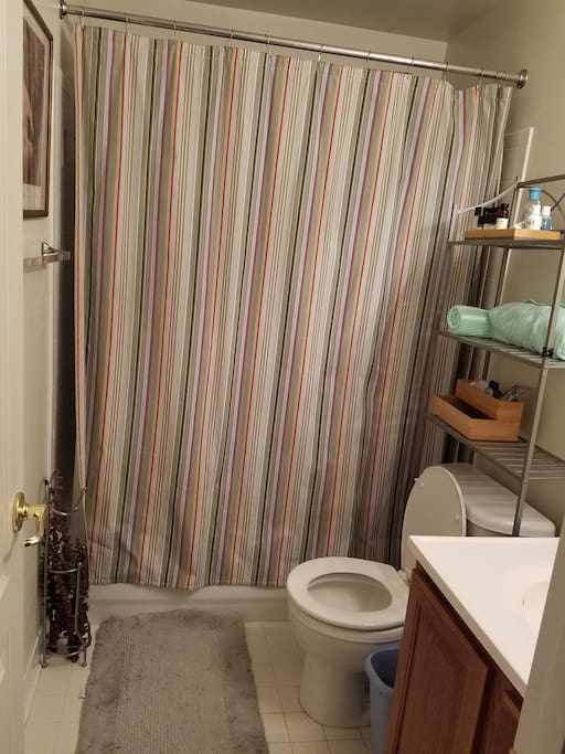 Full bathroom with shower/tub.  We try to keep it stocked with necessities, just in case you forgot something.