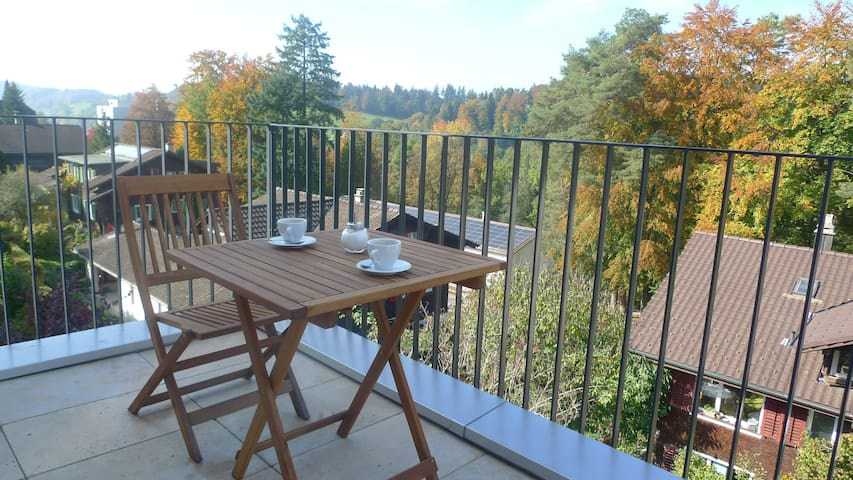 From the balcony you enjoy a wonderful view over Rotsee lake (shared with 1 other guest room).