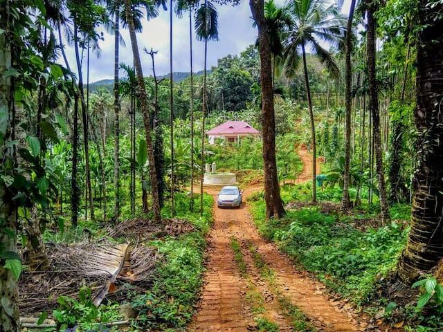 THE PALAVAYAL FARM RESORTS