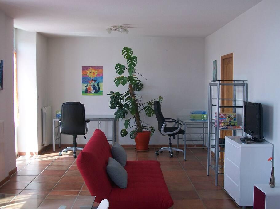 Un salon spacieux avec un canapé convertible supplémentaire.