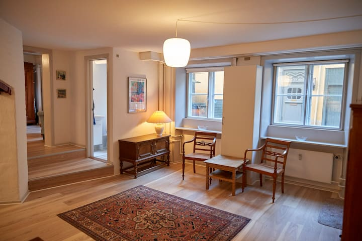Charming studio apartment next to King's Garden - København - Apartment