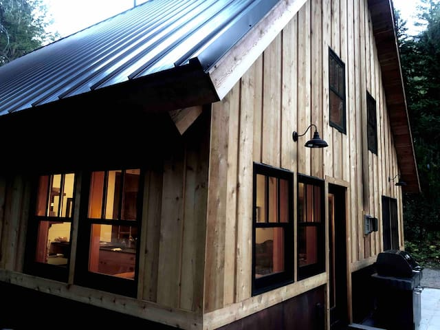 Newer Modern Cabin