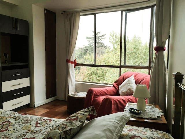 Magnificent Forestal Park View Bed & Breakfast I