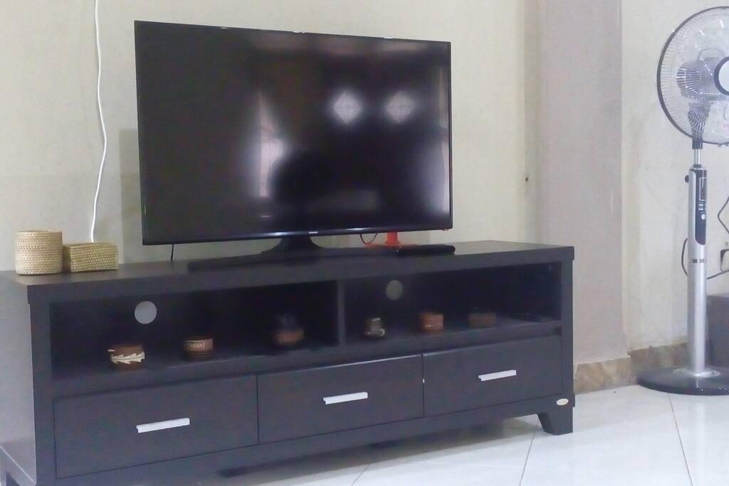 Satelite TV