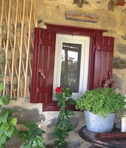 Unique cottage house - Psinia