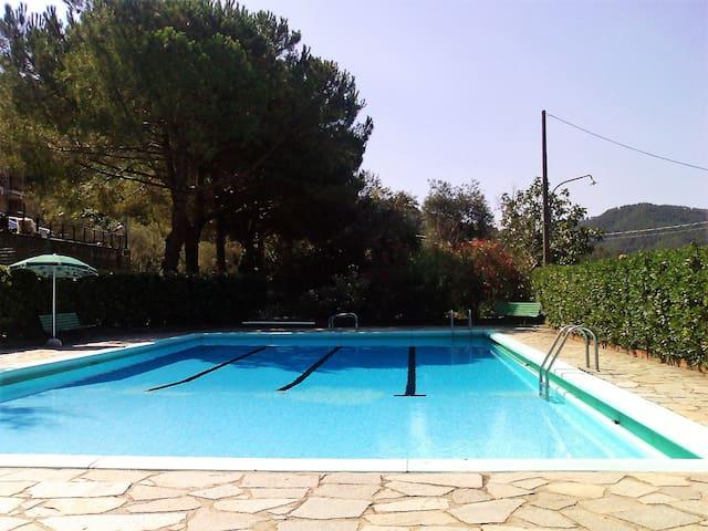 Cosy apartment with swimming pool in Deiva Marina - Piazza - Apartemen