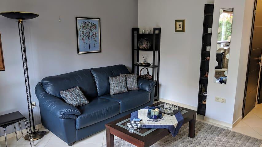 Convertible sofa (can sleep 2 adults)