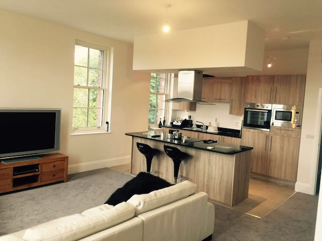 St Georges Mansions Stunning Penthouse Apartment - Stafford - Apartemen